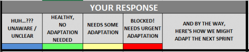 The Response Options