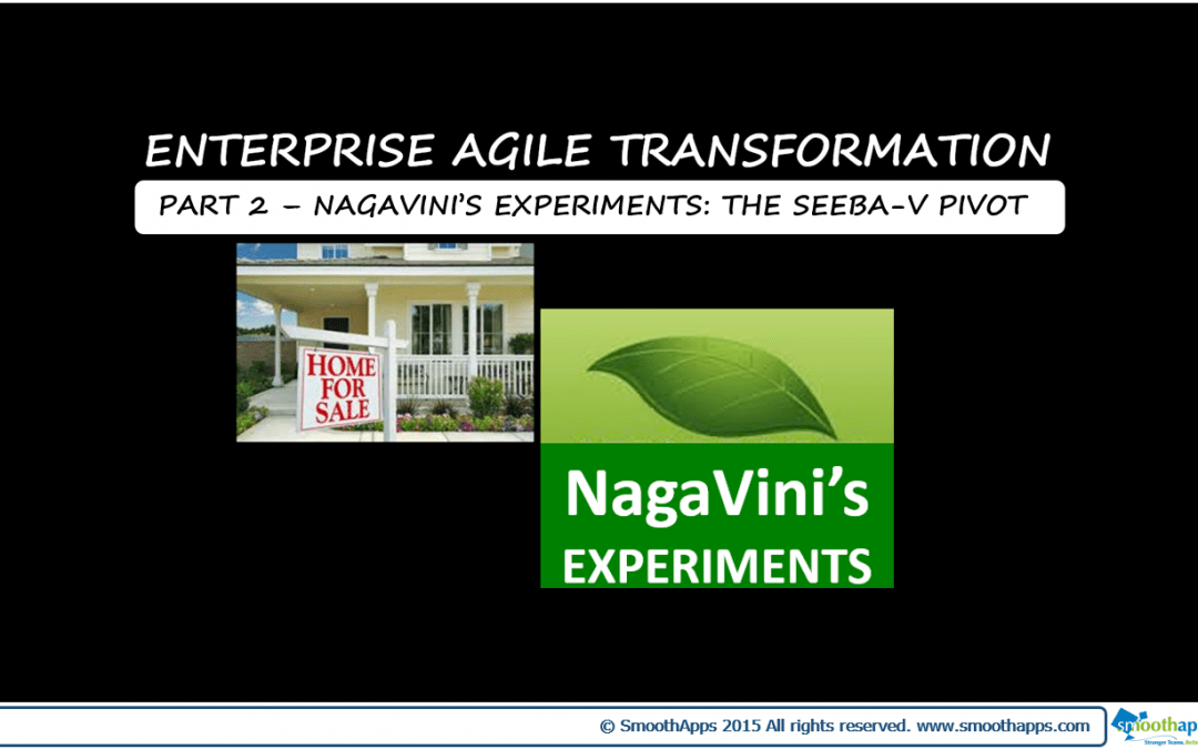 ENTERPRISE AGILE TRANSFORMATION PART 2 – NagaVini's Experiments: The Seeba-V Pivot