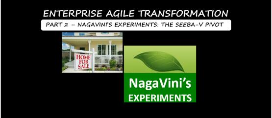 Seeba's Experiment - The SEEBA-V Pivot